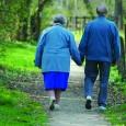 Nell'ambito delle iniziative dell'Anno Europeo dell'Invecchiamento attivo e della solidarietà tra le generazioni, svariati sono i progetti che hanno mirato all'approfondimento delle problematiche della fascia di popolazione rappresentata dagli anziani,...